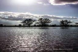 hoog_water